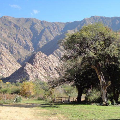 Rural landscapes in Northern Argentina