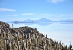 Dazzeling landscape from Cacti island in the Uyuni Salt Flat, Bolivia