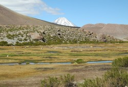 Landscape in the Atacama Desert, on the way to the Tatio Geyser