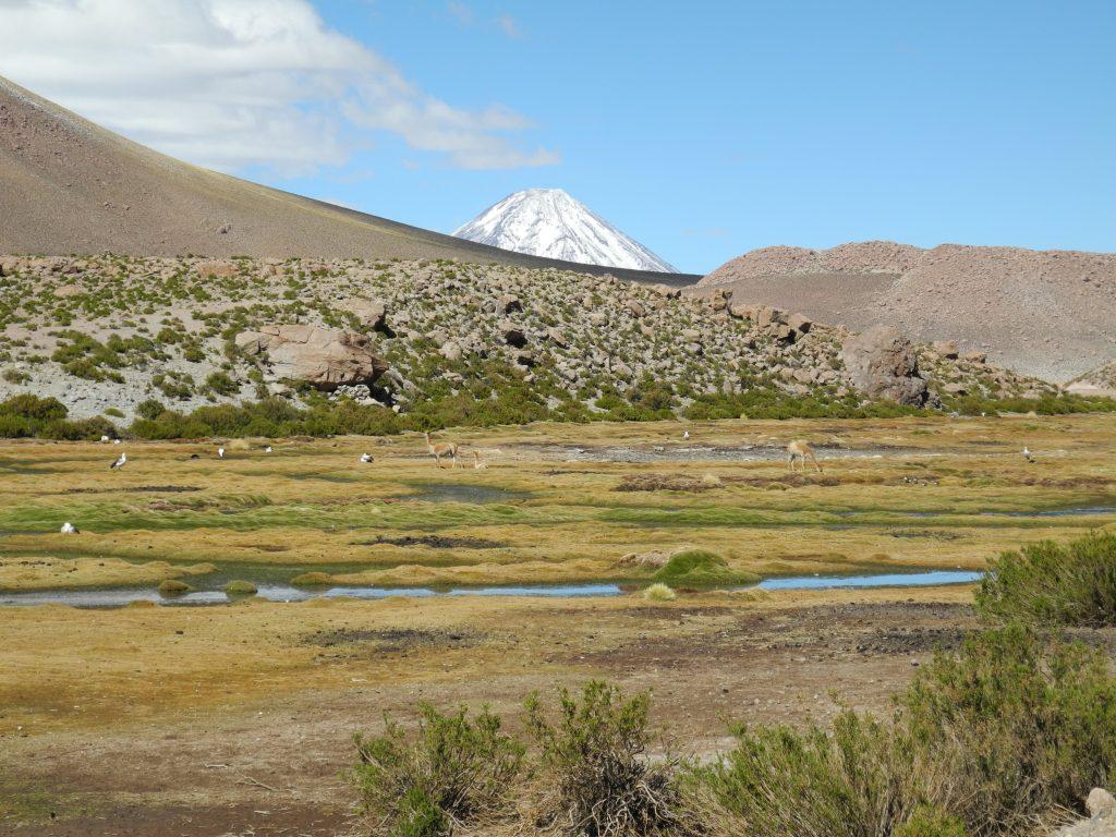 Landscape in the Atacama Desert, Chile