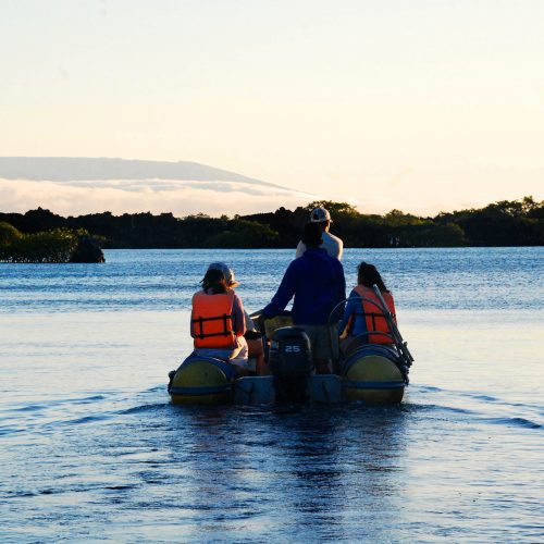 Boating in Elizabeth Bay, Galapagos Islands tour