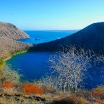 View of the Darwin lake in Tagus Cove, Galapagos Islands, Ecuador tour