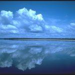 Rio Negro, Manaus, Amazon Rainforest, Brazil