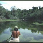 Canoeing, Amazon, Brazil