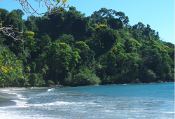 A tranquile beach in Corcovado National Park - Costa Rica
