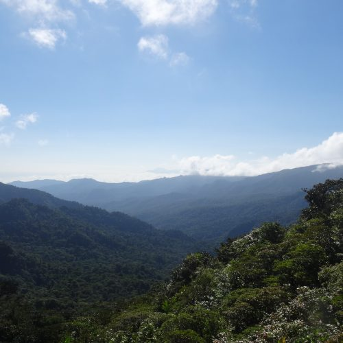 Impressive views from the Monteverde Cloud Forest National Park, Costa Rica