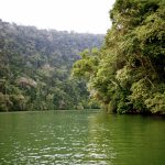 Cruising throught the lush jungle on the Rio Dulce, Guatemala