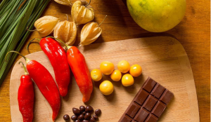 Special ingredients to make delicious chocolate bars, Cocoa Ecuador Tour