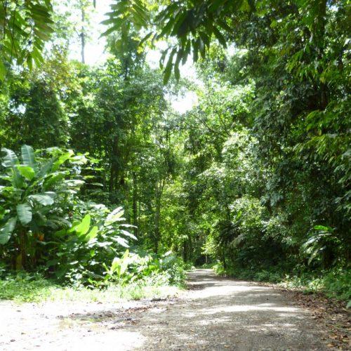 Going off the beaten path to Playa Hermosa community, near Uvita in Costa Rica