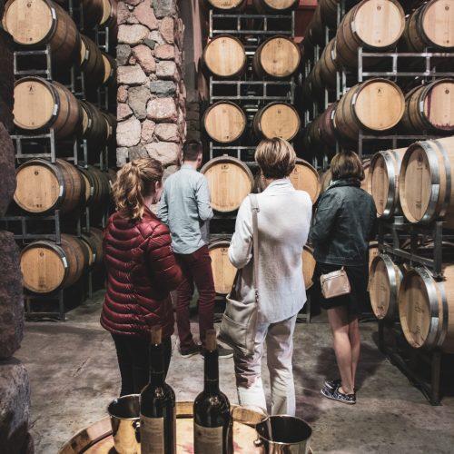 Premium wine tasting tour in Lujan de Cuyo, near Mendoza in Argentina