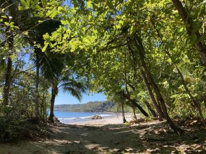 The lovely beach in front of the Ylang Ylang Resort in Montezuma, Costa Rica